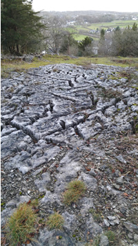 A photo of a limestone pavement