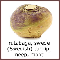 rutabaga, swede, (Swedish) turnip, neep, moot