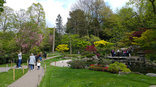 A photo of the Kyoto Garden (京都庭園) Holland Park in London