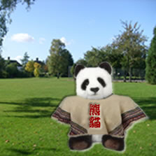 A panda in a poncho in a park